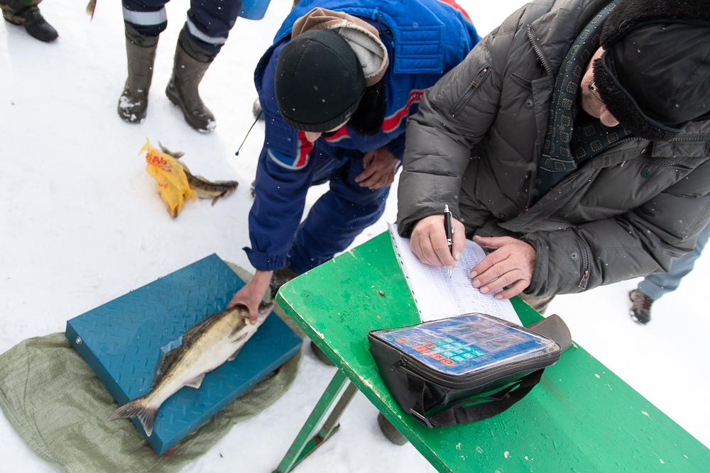 0302 CHempionat rybnoj lovliDSC 7408 - Урбантур-Маркс Блог о туризме в Марксе Чемпионат рыбной ловли в Марксе